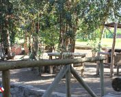 parque1001
